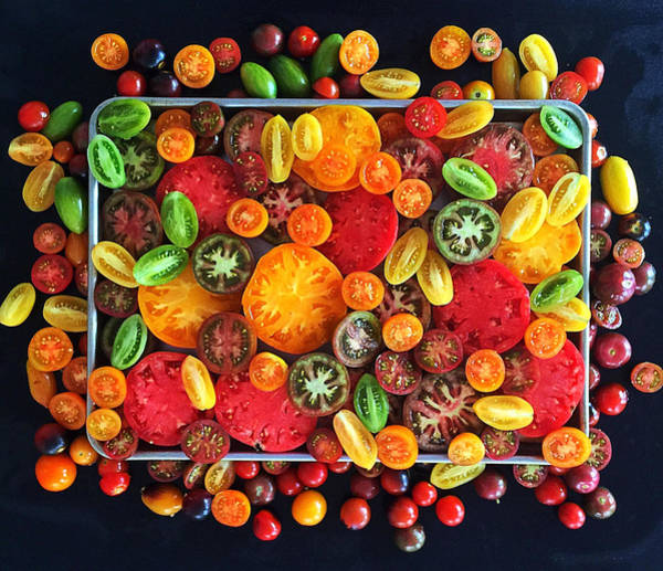 Photograph - Heirloom Tomato Medley by Sarah Phillips