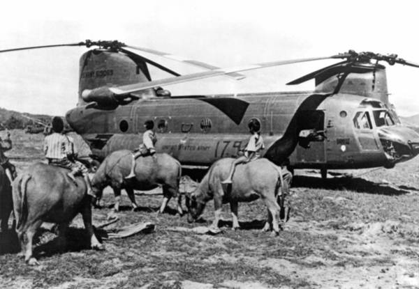 Wall Art - Photograph - Helicopters And Water Buffalos by Underwood Archives