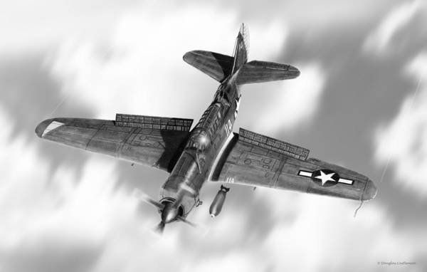 Drawing - Helldiver by Douglas Castleman