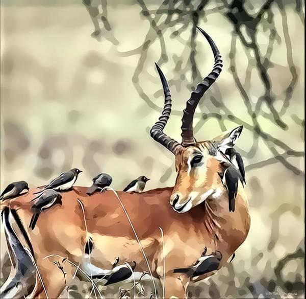 Photograph - Hello Deer by Kathy Tarochione