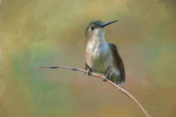 Painting - Hello Little Friend Hummingbird Painting by Jai Johnson