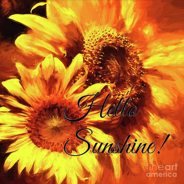 Photograph - Hello Sunshine Squared by Pam  Holdsworth