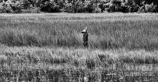 Phnom Penh Wall Art - Photograph - Hello Wetlands Siem Reap by Chuck Kuhn