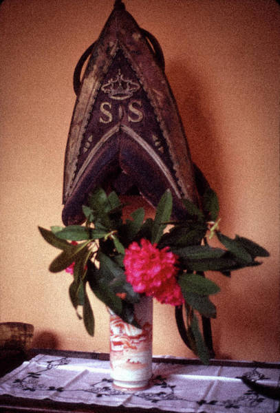 Photograph - Helmet And Flower by Samuel M Purvis III
