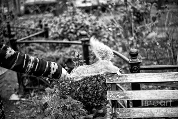 Photograph - Helping Hand by John Rizzuto