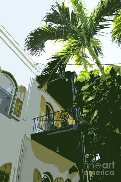 Photograph - Hemingway Palm by Jost Houk