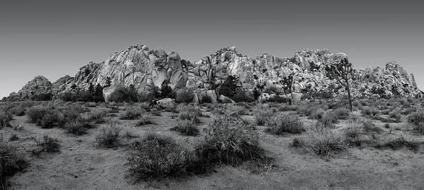 Photograph - Hemingway Wall Black And White Version by Paul Breitkreuz