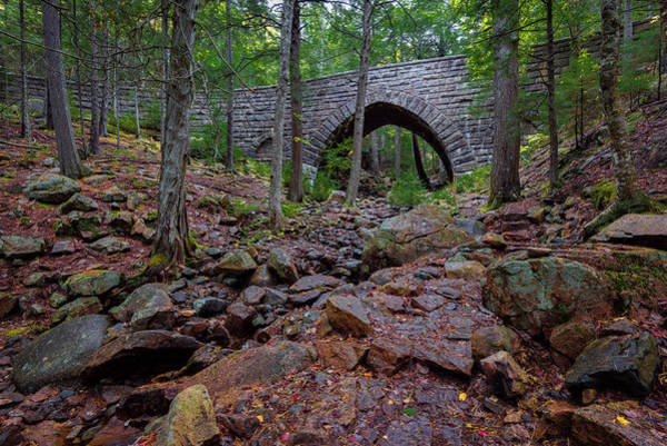 Photograph - Hemlock Bridge by Gary Lengyel