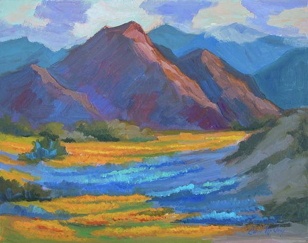 Wall Art - Painting - Henderson Canyon Borrego Springs by Diane McClary