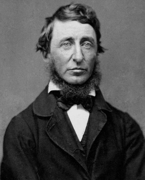 Wall Art - Photograph - Henry David Thoreau - Essayist And Philosopher by War Is Hell Store