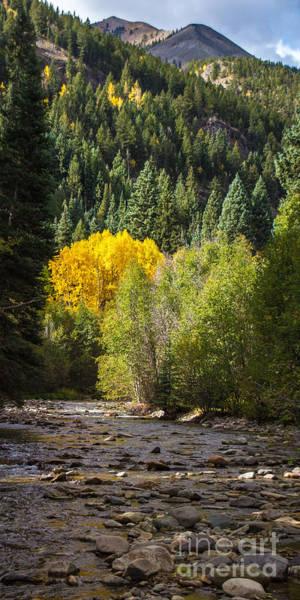 Photograph - Henson Creek 1 by Jim McCain