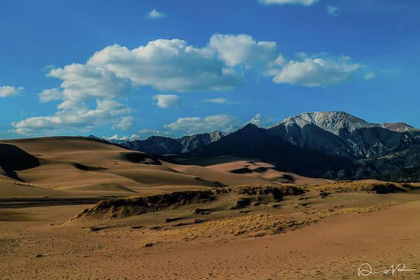 Photograph - Herard Past The Dunes by Dennis Dempsie