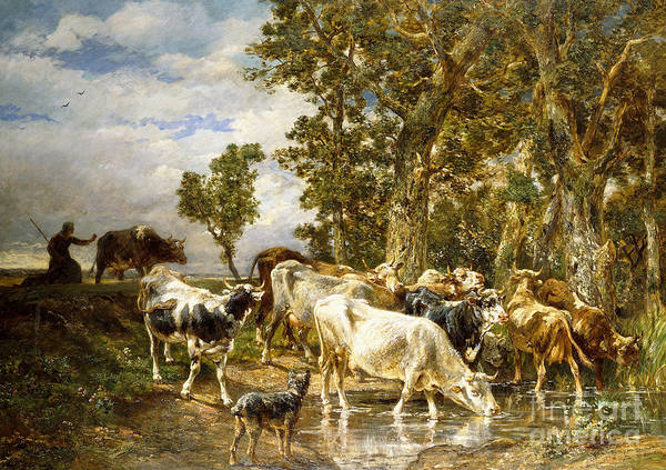 Herding Dog Wall Art - Painting - Herd Of Cows At A Drinking Pool by Charles Emile Jacque