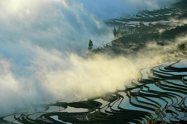 Wall Art - Photograph - Here Comes The Mists by Midori Chan