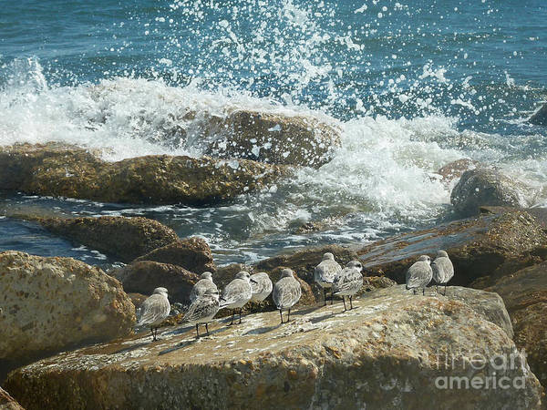 Wall Art - Photograph - Here It Comes by Lucyna A M Green