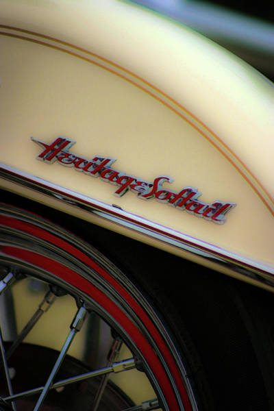 Photograph - Heritage And Cream 5498 H_2 by Steven Ward