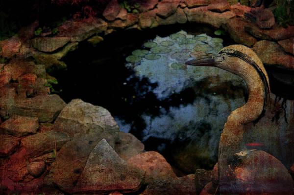 Photograph - Heron And The Koi Pond by Lesa Fine