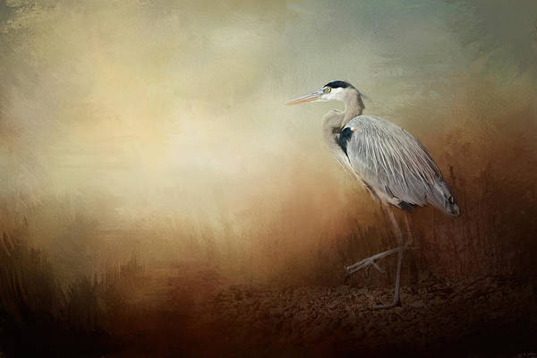 Photograph - Heron At The Inlet by Jai Johnson