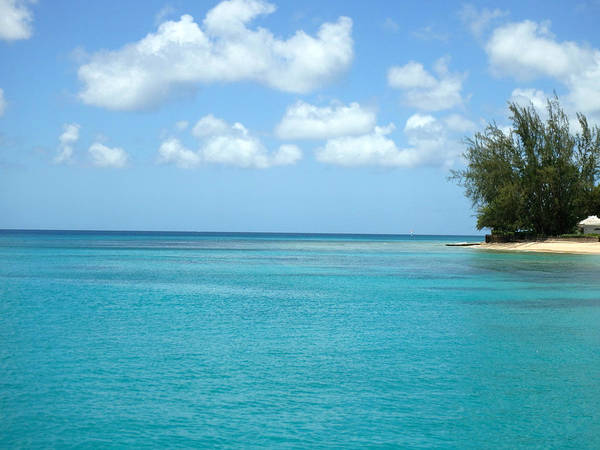 Photograph - Heron Bay Beach Barbados 2 by Kimberly Perry