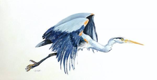 Heron In Flight Art Print