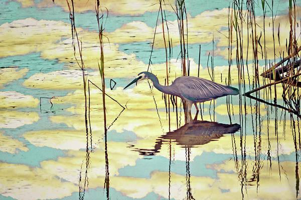 Mangroves Digital Art - Heron In The Clouds by Karen Black