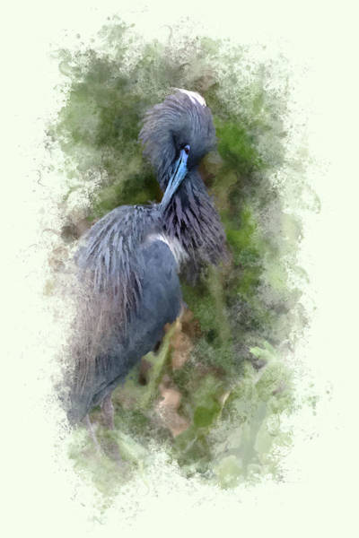 Great Blue Heron Mixed Media - Heron In The Wetlands by Cyndy Doty