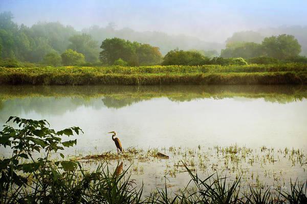Photograph - Heron Sunrise Landscape by Christina Rollo