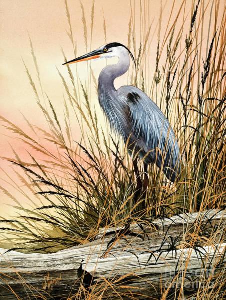 Herons Wall Art - Painting - Heron Sunset by James Williamson