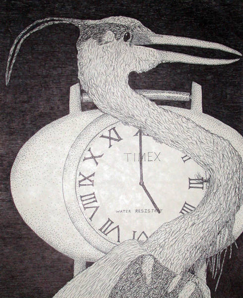 Drawing - Heron Time by Shane Bechler