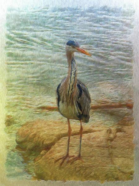 Digital Art - Heron Today Gone Tomorrow by Leigh Kemp