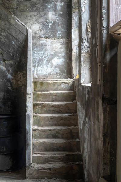 Photograph - Herring Cannery Stairs by Tom Singleton