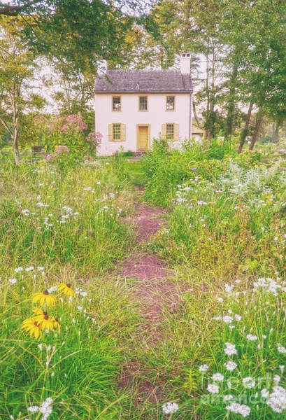 Photograph - Hibbs House by Debra Fedchin