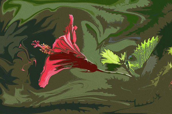 Liquify Photograph - Hibiscus Dark And Light Photopainting 1 by Linda Brody