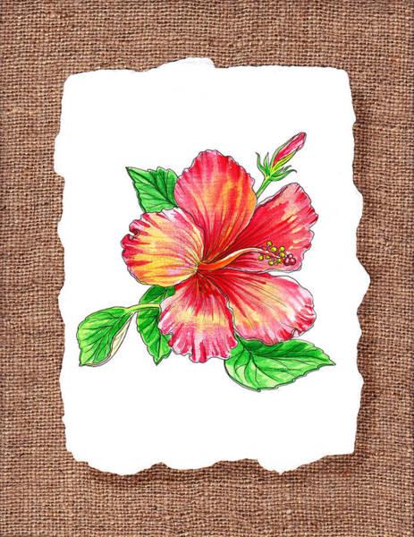 Hibiscus Flower Painting - Hibiscus Flower Botanical by Irina Sztukowski