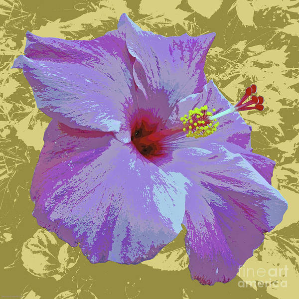 Digital Art - Hibiscus Pop Art by Jean luc Comperat