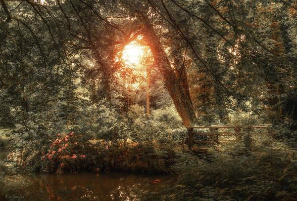 Photograph - Hidden Beauty by Wim Lanclus