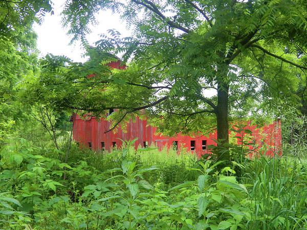 Photograph - Hidden Big Red Barn by Tina M Wenger