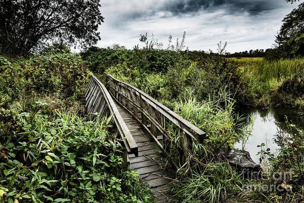 Photograph - Hidden Foot Bridge by M G Whittingham