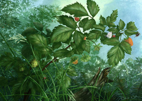Cabbage White Painting - Hidden Gems by Chris Cole