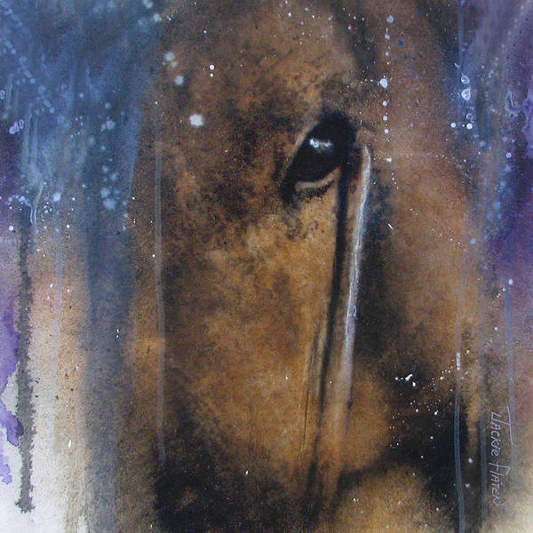 Painting - Hidden Horse by Jackie Flaten