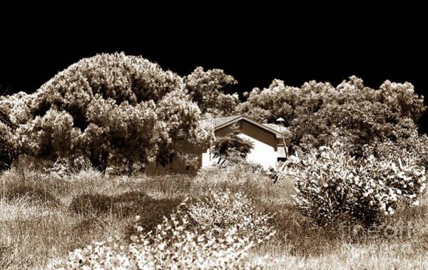 Wall Art - Photograph - Hidden House by John Rizzuto