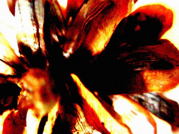 Hidden Image In Abstract Pinecone Art Print