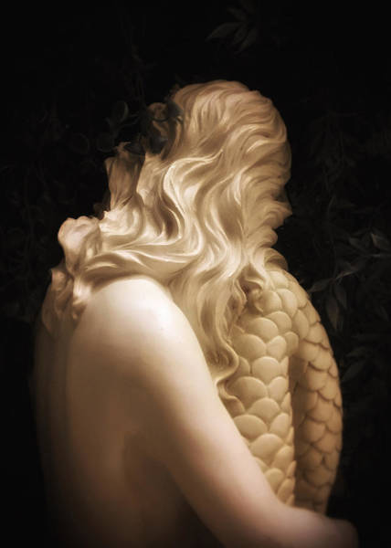 Photograph - Hidden Mermaid 2 by Nathan Little