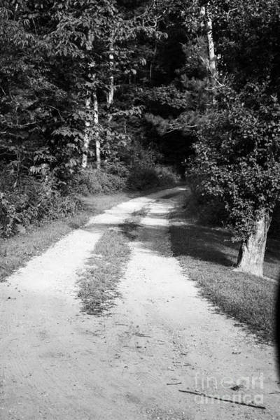 Photograph - Hidden Road by Roberta Byram