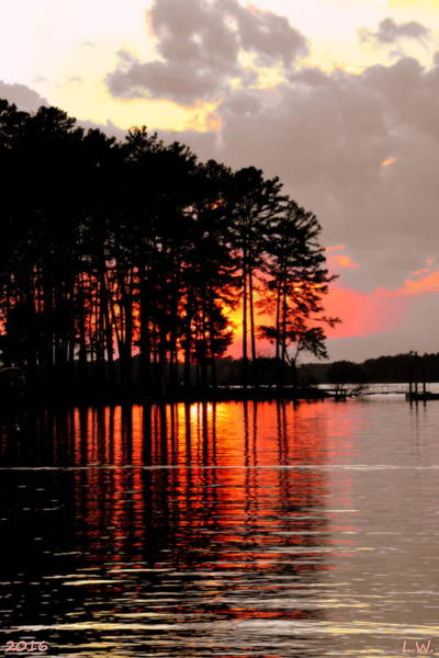Photograph - Hidden Sunset by Lisa Wooten