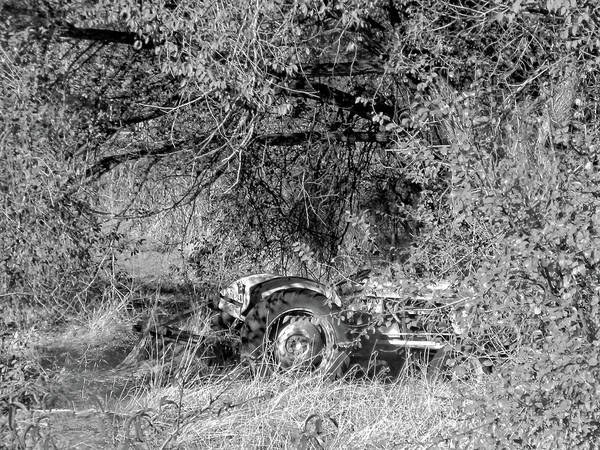 Photograph - Hidden Tractor Bw by David King