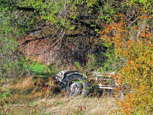 Photograph - Hidden Tractor by David King