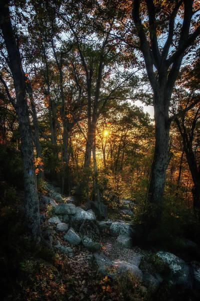 Photograph - Hidden Trail by Ryan Wyckoff