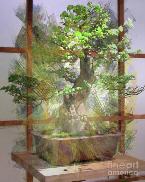 Bonsai Tree Digital Art - Hidden Treasures by John Beck