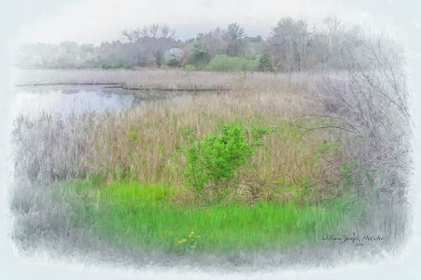 Painting - Hidden Wetlands  by Bill McEntee